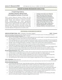 Business Resume Format Interesting Facilitator Resume Sample Executive Format R Perfect Executive
