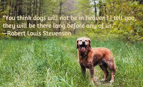 Loss Of Pet Quotes Unique 48 Dog Loss Quotes Comforting Words When Losing A Friend
