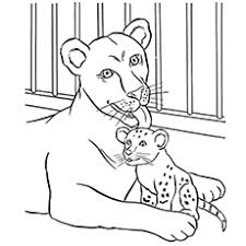 Small Picture Coloring Pages Of Animals And Their Young Coloring Pages