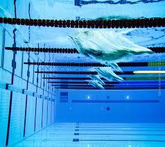 Αποτέλεσμα εικόνας για κολυμβηση παραολυμπιακοι
