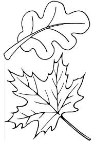 Small Picture Maple and Oak Fall Leaf Coloring Page NetArt
