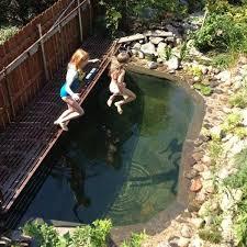 backyard natural swimming pool 18