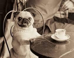 Τον καφέ μου παρακαλώ!