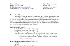 persuasive essay sample college reflective essay writing samples a persuasive essay sample college reflective essay writing samples a reflective essay is a piece of persuasive essay outline example persuasive outline