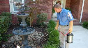 Image result for pest control san antonio
