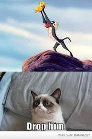 Grumpy cat on Pinterest | Sad Cat, Cat Memes and Smosh via Relatably.com