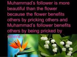 essay of my favourite personality is muhammad saw  essay of my favourite personality is muhammad saw