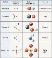 For Each Of The Functional Groups Complete The Chart Functional Groups Chart Google Search Functional Group