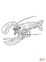 Small Picture Lobsters coloring pages Free Coloring Pages