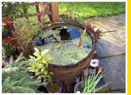 Small Picture small garden pond design ideas Landscaping Gardening Ideas