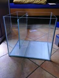 Il mio primo acquario [archivio] acquaportal forum acquario