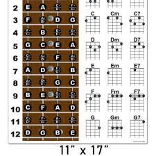 Baritone Ukulele Fretboard Notes And Chord Chart Poster