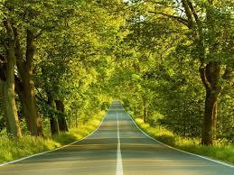 Resultado de imagem para estradas paisagens