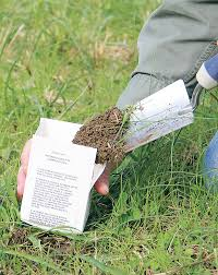 Time To Soil Test For A Great Garden Experience The