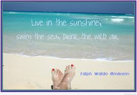 Summer Holidays Quotes Sayings On Images