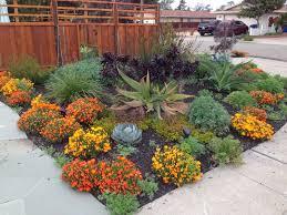 drought resistant garden. Drought Tolerant Garden Resistant R