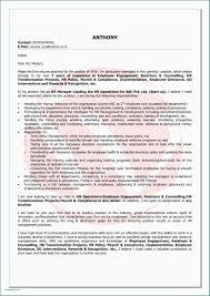 Business Owner Resume Sample Entrepreneur Resume Example