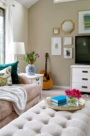 ... Living Room Ideas On A Budget With Cushion And Tv And White Lamp ...