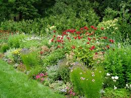 flower garden designs. Perennial Flower Garden Designs