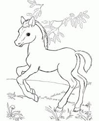Baby Horse Drawing Printable Coloring Page For Educations