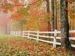 fall nature backgrounds. Nature Fall Wonderful Antumn Background Wallpaper For Laptop Desktop Backgrounds A