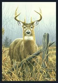whitetail deer area rugs best everything doormats wildlife mats images on nature artwork art red wildlife themed area rugs believe deer