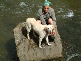 mans best friend an essay about laughter  the chin project big head river