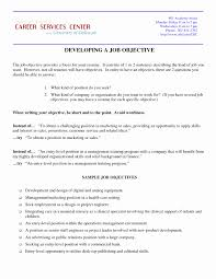 Resume Objective For It Professional Career Change Resume Objective Statement Examples Inspirational 19
