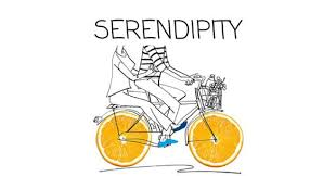 Serendipity | Serendipity, Memes, Poetry