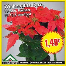 Holz Meyer Ek Garden Center Gelsenkirchen Germany
