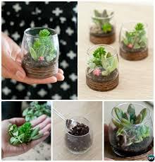10 diy mini fairy terrarium garden