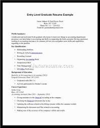 Resume Profile Summary Examples Elegant Profile Summary For Resume