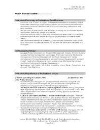 Sample Of Resume Executive Summary Fresh Impressive Design