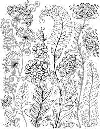 Decoratieve Wilde Bloemen En Kruiden Stockvector Natasha Tpr