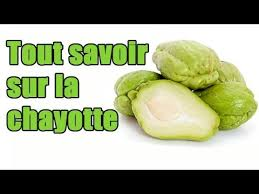 plantation chouchou chayotte christophine