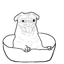 simplistic pug coloring sheets d8731 pug coloring page pug coloring pages pug coloring pages also remarkable
