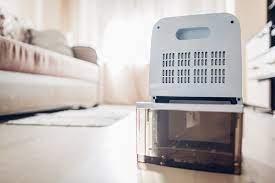humidifier or dehumidifier for winter
