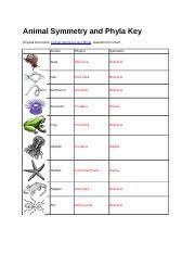 Animal Symmetry And Phyla Key Animal Phylum Matching