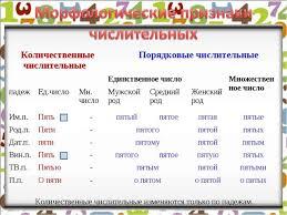 Презентация по русскому языку на тему Имя числительное  Количественные числительные изменяются только по падежам Количественные чис