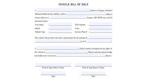 Free 7 Vehicle Bill Of Sale Samples Pdf