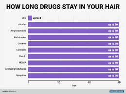 How Long Do Drugs Stay In Your System Chart Heres How Long Common Drugs Stay In Your Body