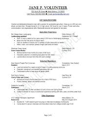 work philosophy example resume resume experience example