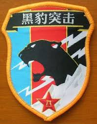 Image result for china commandos logo