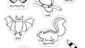 Safari Animals Template Safari Animals Coloring Pages Ivychendesign Co