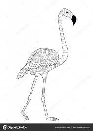 Flamingos Vector Kleurplaten Voor Volwassenen Stockvector