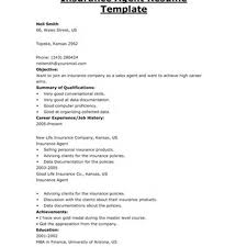 The Best Insurance Agent Job Description Sample Recentresumes Com
