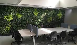 green wall office. Phs Greenleaf Indoor Living Wall Installed In A Office Workspace Green