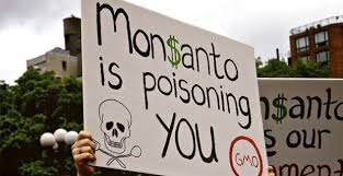 Image result for monsanto roundup lawsuit