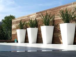 contemporary outdoor planters uk plants for pots front door modern and planting p