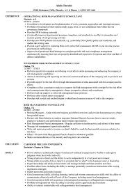 Management Consultant Resume Risk Management Consultant Resume Samples Velvet Jobs 15